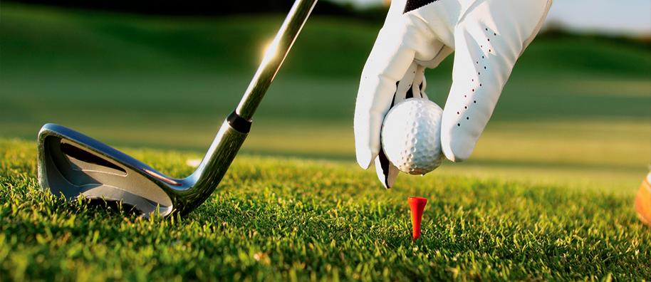 Công ty Dịch vụ Golf Online