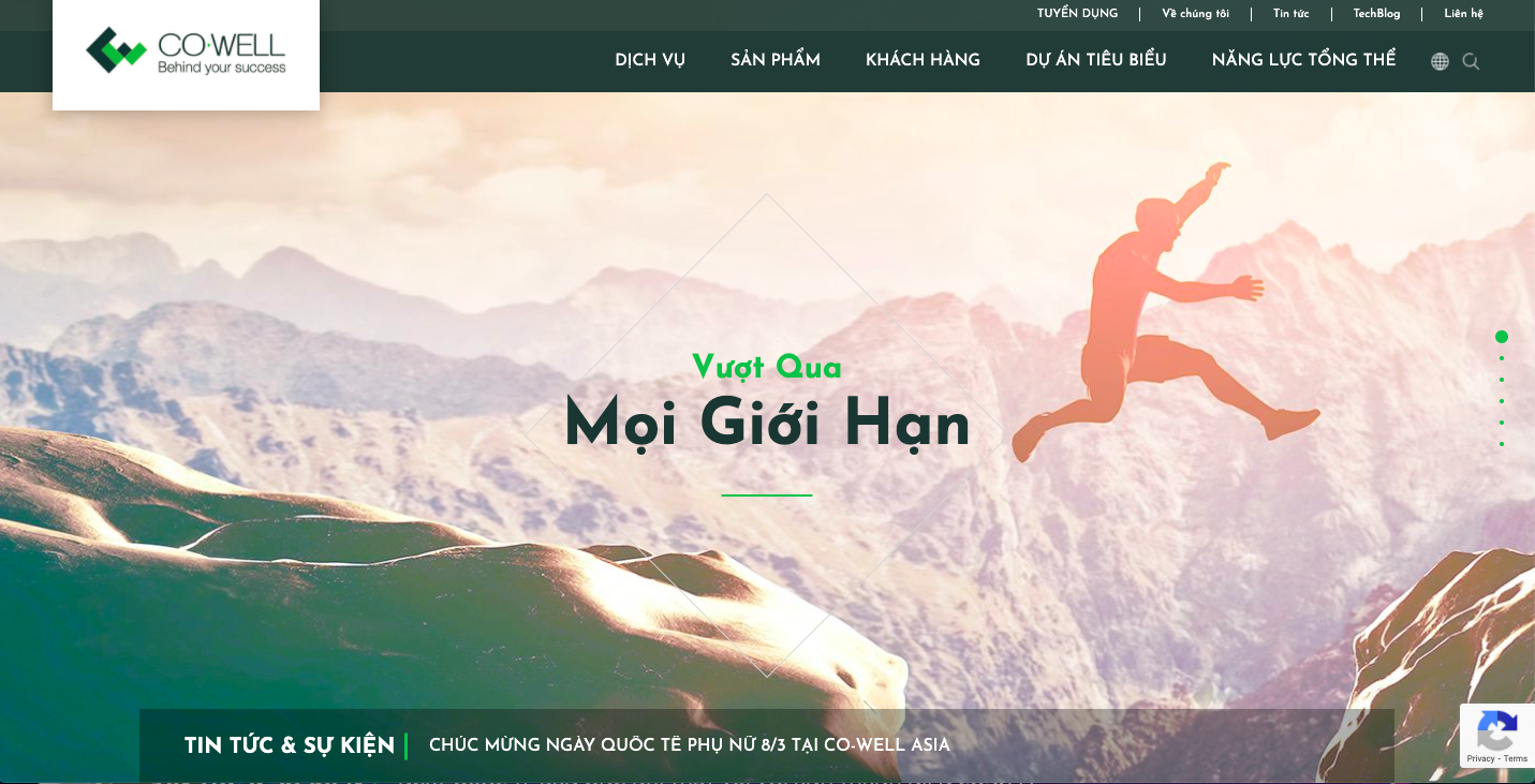 website doanh nghiệp co-well asia